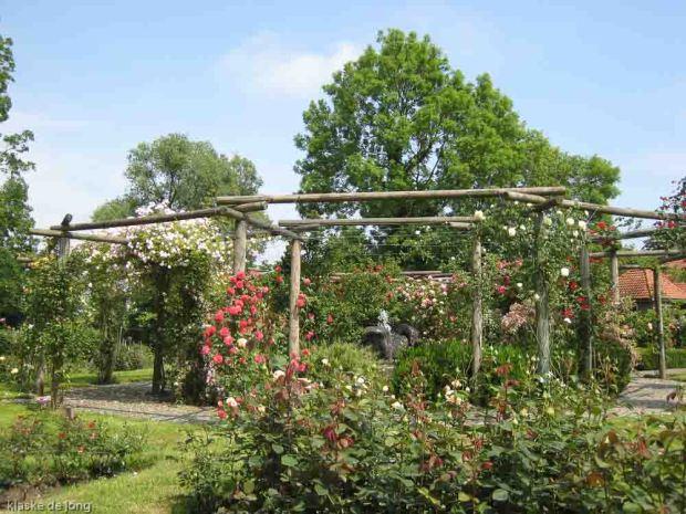 img_0534-rosarium-diepenheim