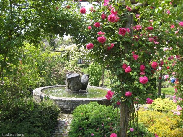 IMG_0536 rosarium Diepenheim.jpg
