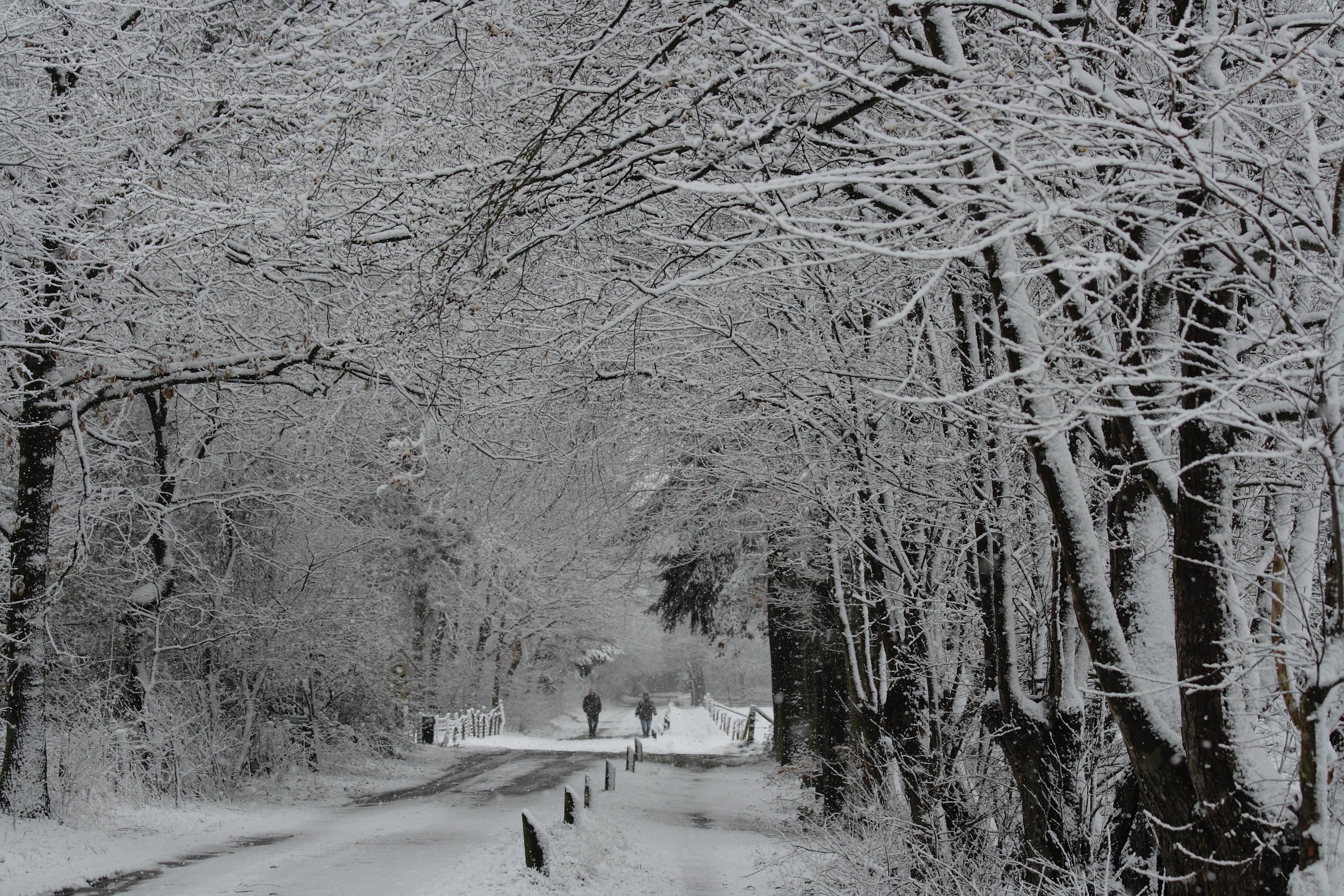 Sneeuwlandschap op 2e paasdag op pad weblog van klaske de jong - S van de bureau ...